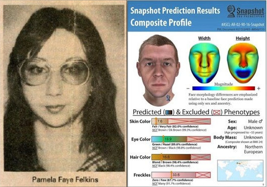 [IMAGE] Photo of Victim, Pamela Faye Felkins; Snapshot Composite Profile of Person of Interest