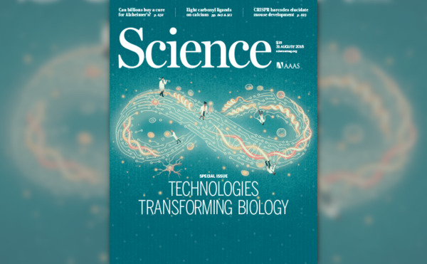 [IMAGE] Cover Image from <i>Science</i> 31 Aug 2018: Vol. 361, Issue 6405